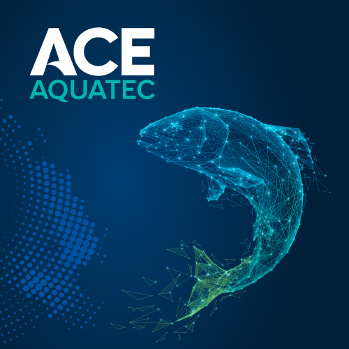 Ace-Aquatec-ai-salmon-blog-post_2